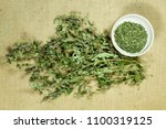mint  spearmint. dry herbs for... | Shutterstock . vector #1100319125