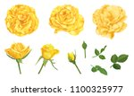 yellow roses with bud and... | Shutterstock .eps vector #1100325977