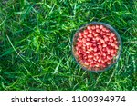 treated colorful corn seeds... | Shutterstock . vector #1100394974