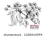 hand drawn black and white pear ... | Shutterstock .eps vector #1100414594