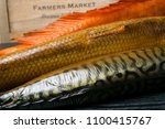 smoked fish on the wooden table ... | Shutterstock . vector #1100415767