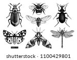 vector collection of high... | Shutterstock .eps vector #1100429801