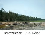 deforestation to create more... | Shutterstock . vector #110046464