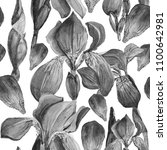 watercolor seamless black white ... | Shutterstock . vector #1100642981