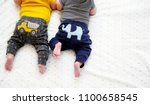 two bottom parts and cute tiny... | Shutterstock . vector #1100658545