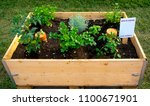 container to make a vegetable... | Shutterstock . vector #1100671901