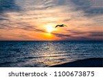 seagull silhouette sunset water ... | Shutterstock . vector #1100673875
