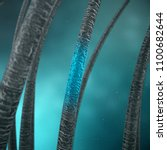 3d rendering hair keratin... | Shutterstock . vector #1100682644