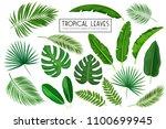 vector set tropical leaves....   Shutterstock .eps vector #1100699945