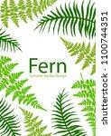 fern frond tropical leaves... | Shutterstock .eps vector #1100744351