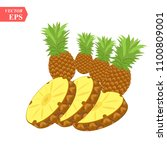 pineapple realistic fruit with... | Shutterstock .eps vector #1100809001