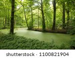 forest landscape in the spring... | Shutterstock . vector #1100821904