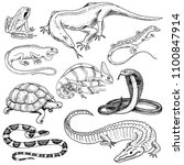 Set of reptiles and amphibians. Wild Crocodile, alligator and snakes, monitor lizard, chameleon and turtle. Pet and tropical animal. Engraved hand drawn in old vintage sketch. Vector illustration.