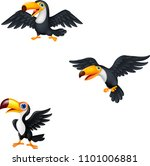 cartoon toucan collection set | Shutterstock .eps vector #1101006881