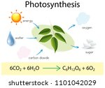 a science education of...   Shutterstock .eps vector #1101042029