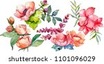 pink bouquet wildflower. floral ... | Shutterstock . vector #1101096029