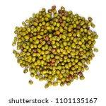 mung beans on white background | Shutterstock . vector #1101135167