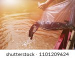 release fishes in plastic bag... | Shutterstock . vector #1101209624