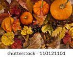 Autumn Scene With Pumpkins