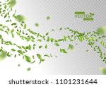 green flying or falling off... | Shutterstock .eps vector #1101231644