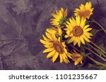 Sunflowers On Gray Vintage...