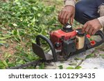 hedge trimmer in action.cutting ... | Shutterstock . vector #1101293435