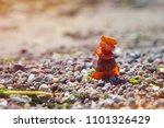 amber at baltic beach | Shutterstock . vector #1101326429