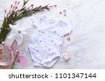 baby girl background            ... | Shutterstock . vector #1101347144