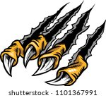 illustration of a bird's claw. | Shutterstock . vector #1101367991