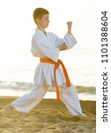 young boy practicing karate... | Shutterstock . vector #1101388604