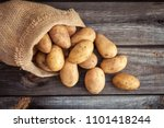 raw potato food . fresh... | Shutterstock . vector #1101418244