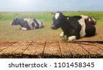 empty table background | Shutterstock . vector #1101458345