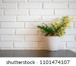 front view of plant and flower... | Shutterstock . vector #1101474107