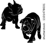 silhouettes of dogs french... | Shutterstock .eps vector #1101478031