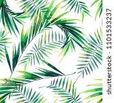 bright beautiful green herbal...   Shutterstock . vector #1101533237