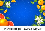 natural citrus fruit background.... | Shutterstock .eps vector #1101542924