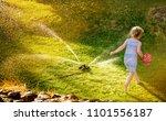 irrigation sprinkler device for ... | Shutterstock . vector #1101556187