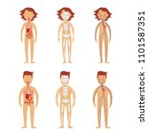 human internal organs in male... | Shutterstock .eps vector #1101587351