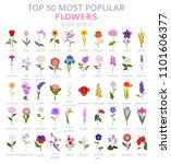 your garden guide. top 50 most... | Shutterstock .eps vector #1101606377