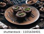 chocolate brownie cake  dessert ... | Shutterstock . vector #1101636401