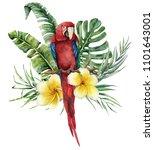 watercolor floral tropical...   Shutterstock . vector #1101643001