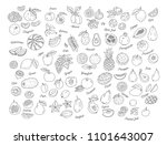 fruit icon  hand drawn set of...   Shutterstock .eps vector #1101643007
