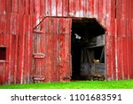 Red Wooden Barn Is Faded And...