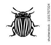 colorado beetle  silhouette of...   Shutterstock .eps vector #1101707324