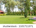 freshly mowed rows of green... | Shutterstock . vector #1101711371