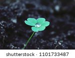 ecological and environmental... | Shutterstock . vector #1101733487