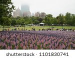 Small photo of Boston, MA, USA- May 28, 2018: Thirty-seven thousand flags, representing fallen soldiers from Massachusetts, are displayed in the Boston Common on Memorial Day.