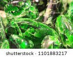 green chrome diopside mineral... | Shutterstock . vector #1101883217
