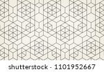 pattern with thin lines ... | Shutterstock .eps vector #1101952667