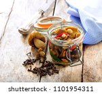 polish or russian picked... | Shutterstock . vector #1101954311